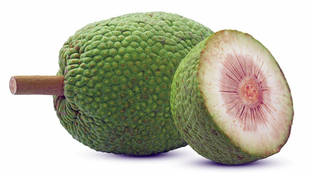 Could Breadfruit Be the Next Superfood?