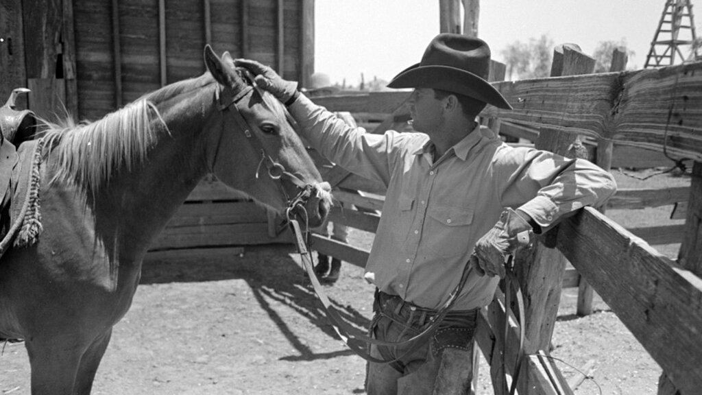 How the Cowboy Saddled Up and Rode Into American History
