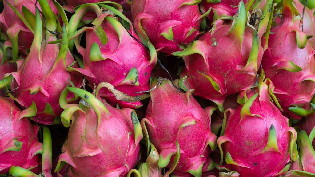 Daily Digest: Why You Should Get Fired Up About Dragon Fruit