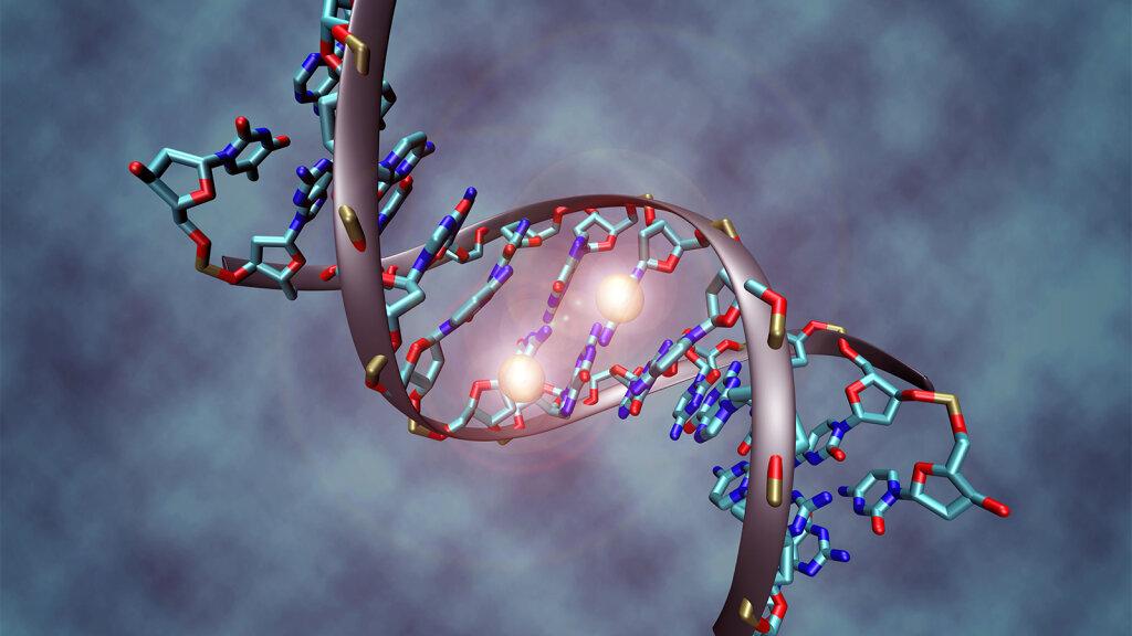 Epigenetics Explains Why Your DNA Doesn't Predict Your Destiny