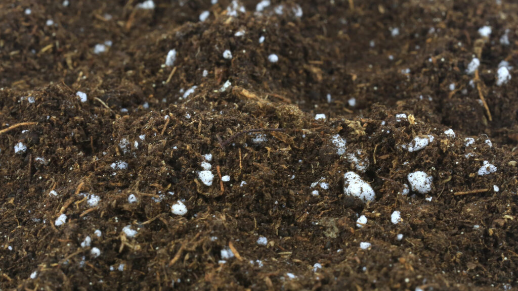 1. Perlite: It's Like Popcorn for Your Potting Soil!