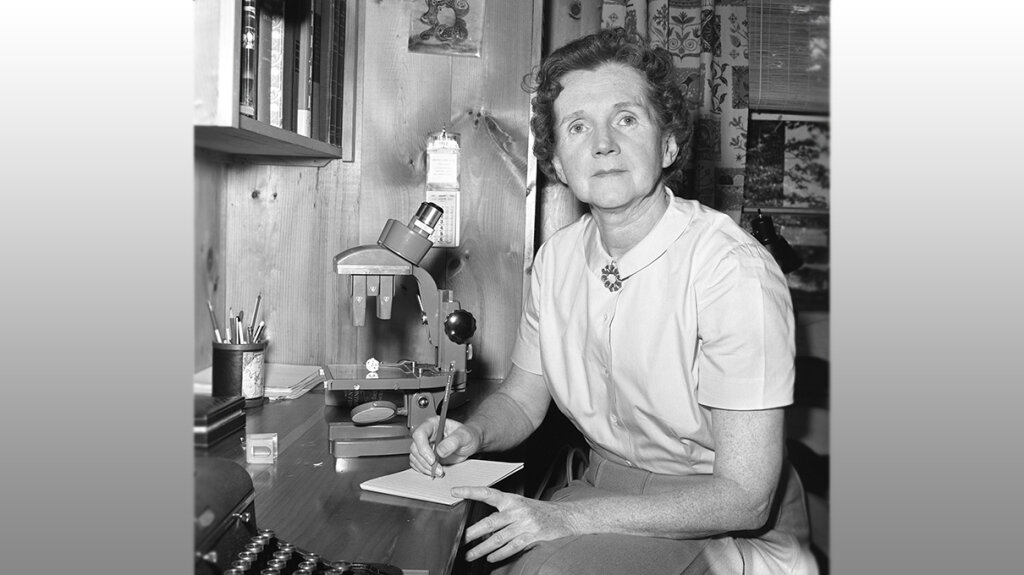 Daily Digest: 10 Things You Should Know About Rachel Carson