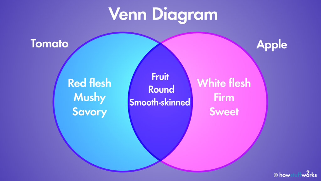 The Venn Diagram  How Overlapping Figures Can Illustrate