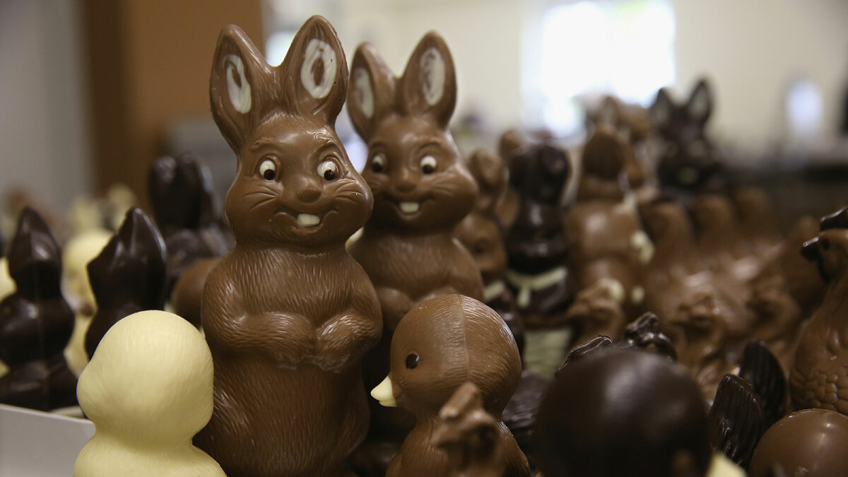 How Do They Make Hollow Chocolate Easter Rabbits?