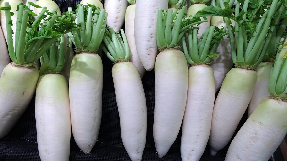 How to Get Your Daikon Radish On