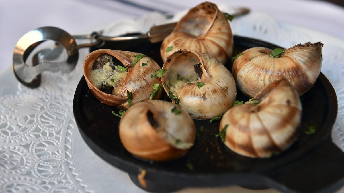 Daily Digest: How Escargot Evolved From Snail Snack to Treat for the Elite
