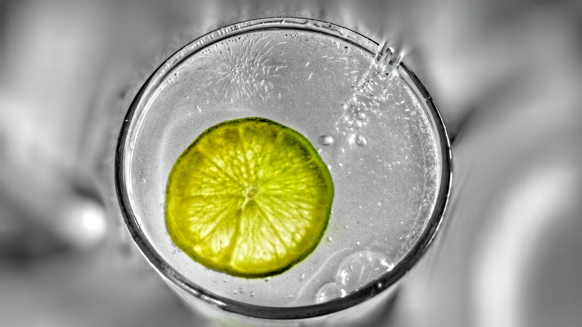 How Gin and Tonic Became the Ultimate Cocktail Combo