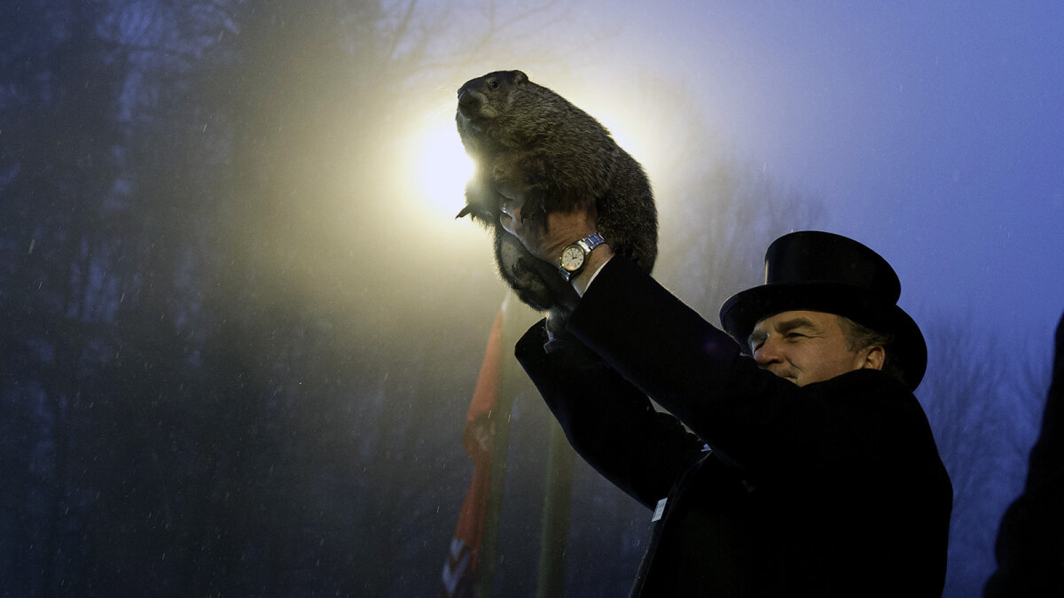 4. How Accurate Is Punxsutawney Phil?