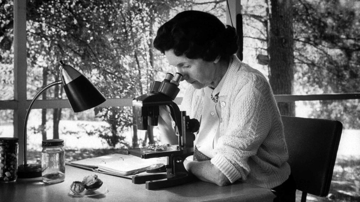 3. 10 Things You Should Know About Rachel Carson