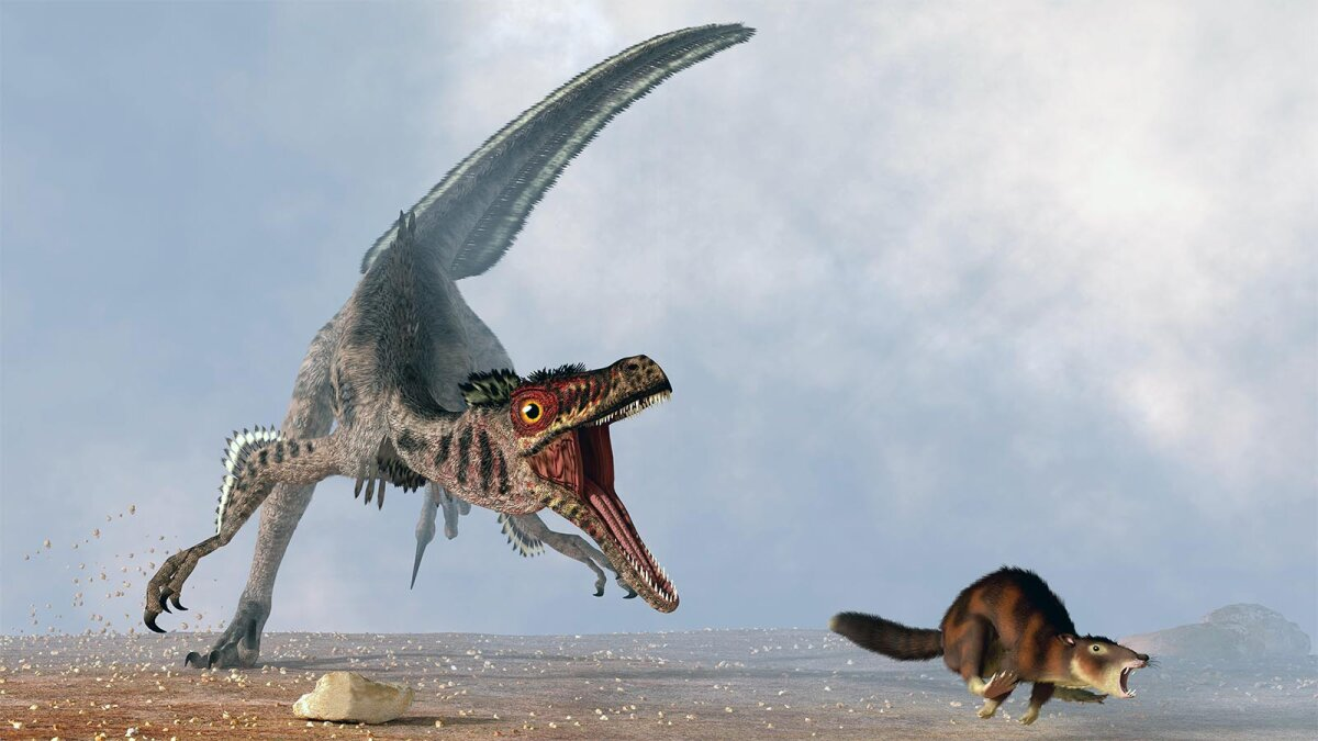 Velociraptor Wasn't the Big, Scary Monster From the Movies