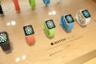 How the Apple Watch Works