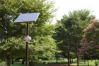 Can solar energy power everyday objects efficiently?