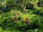 10 Cheap Ways to Landscape