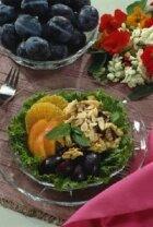 Choosing a Diet Program