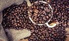 How Coffee Works