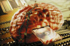 Is the computer a good model for the brain?