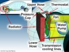 How Car Cooling Systems Work