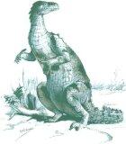 Iguanodon Dinosaurs