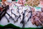 How can you buy fish that are safe to eat?