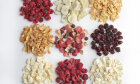 How Freeze-Drying Works