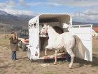 How Horse Trailer Accessories Work