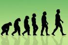 How Evolution Works