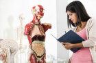 Anatomy 101: Human Body Quiz