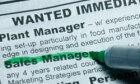Ultimate Job Hunting Quiz