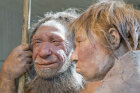 Can we bring Neanderthals back?