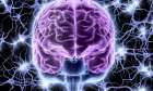 The Ultimate Neuropathy Quiz