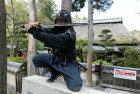 How Ninja Particles Work