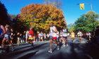 How the NYC Marathon Works