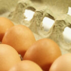 What's better to buy, organic eggs or cage-free eggs?