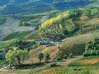 Piedmont Wine Region