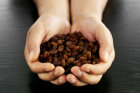 Raisins: Natural Food