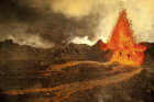 How to Survive a Mass Extinction