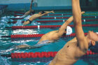 How Swim Training Programs Work