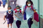 How Swine Flu Works