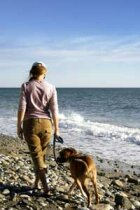 10 Things to Pack When Traveling with a Pet