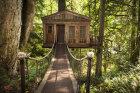Tree House Quiz