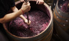 How Winemaking Works