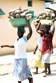 Market women carry roots to market in Acra, Ghana