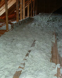 One of the big advantages of insulating with Air Krete is the material's unique way of repelling pests.