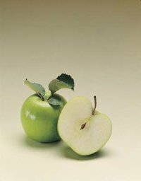 Scholars agree that Eve didn't eat an apple in the Garden of Eden -- it was more likely a fig or grapes.