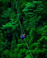A tourist 'zips' over the top of the rainforest, one of the most popular tourist activities in Costa Rica.