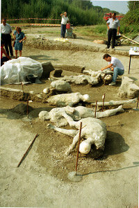 An archaeologist dusts the plastered bodies of a woman and her companion, discovered with several other unearthed skeletons in Pompeii, Italy, Sept. 6, 1991.