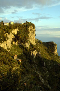 The Campania wine region includes wineries in Naples, Capri, Pompeii and Ischia -- all located along the lovely Amalfi coast. See our collection of wine pictures.