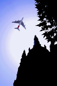 People planning carbon-neutral vacations sometimes buy green tags to offset their flight's emissions.