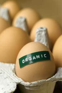 The National Organic Program's criteria for organic certification exclude products from cloned animals and their offspring.