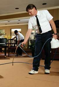 Before using professional pest control services, check what chemicals they use.